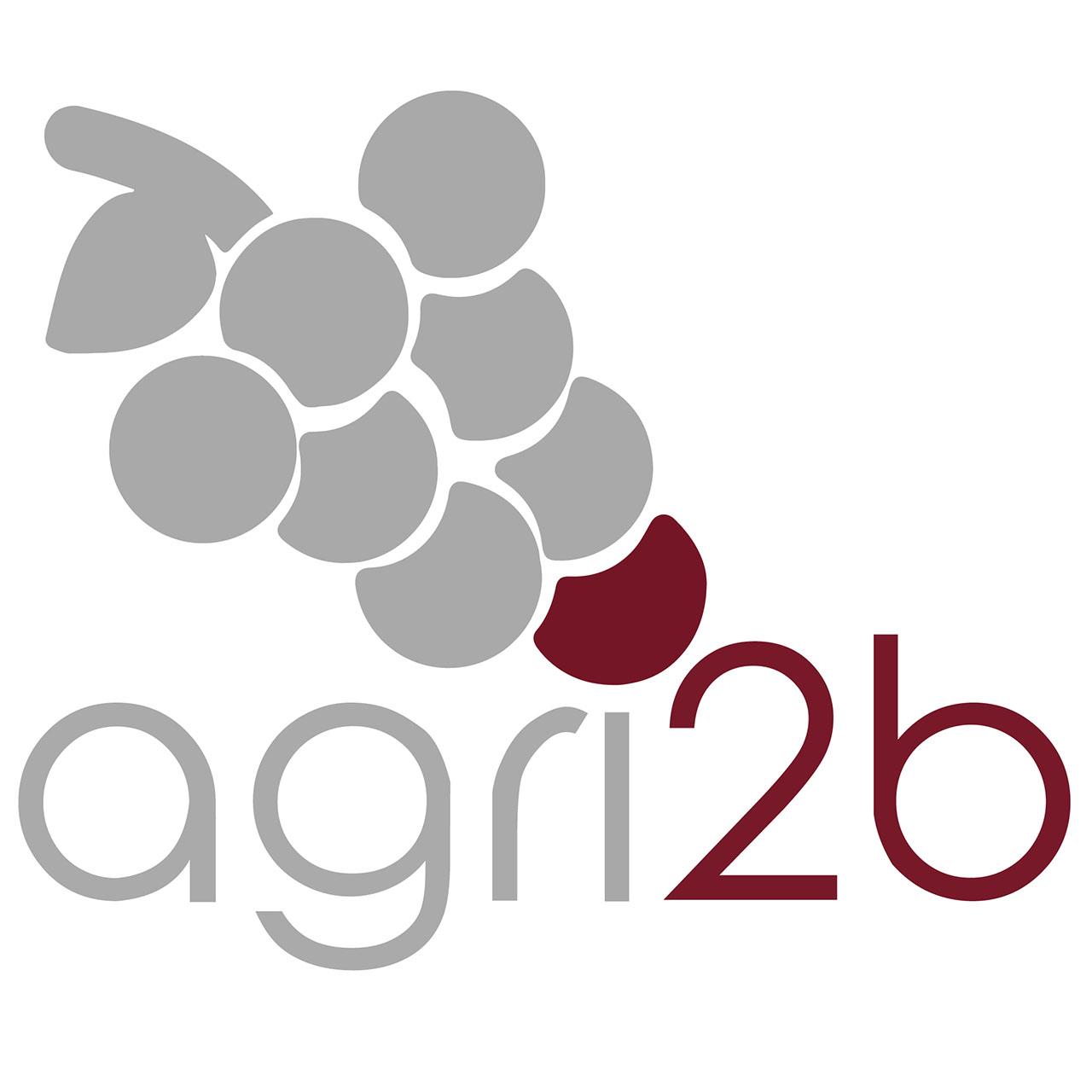 agri2b-logo-grafica-sito-web-contessifostinelli