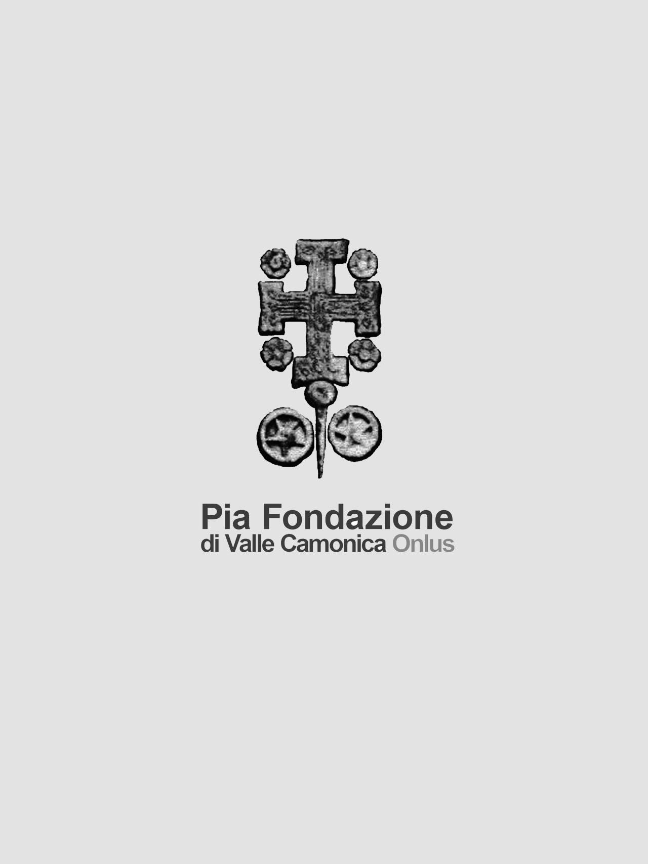 siti-internet-seo-newsletter-social-network-pia-fondazione-di-valle-camonica-onlus-contessifostinelli-