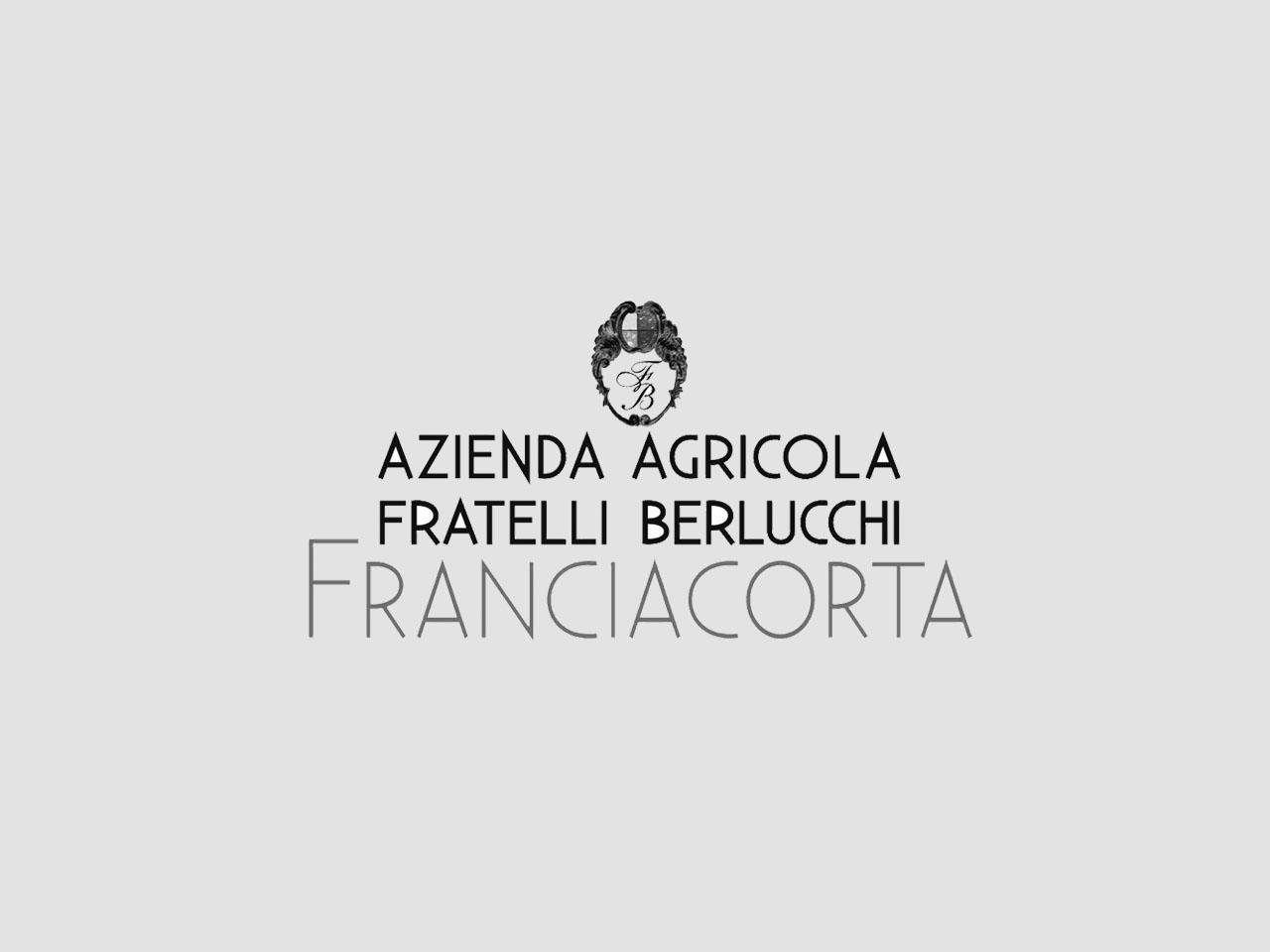 siti-web-seo-newsletter-social-network-fratelli-berlucchi-contessi-fostinelli